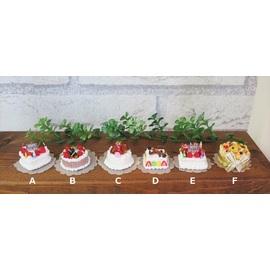 ミニチュア ケーキ1000-4