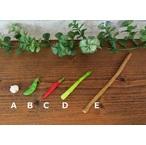 ミニチュア野菜200-2